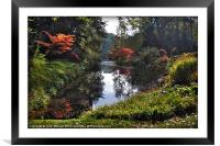 The Lake, Framed Mounted Print