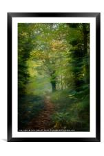 Out of the Shadows, Framed Mounted Print