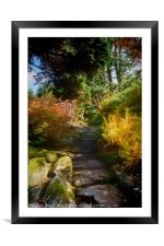 Rocky Path, Framed Mounted Print