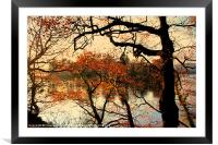 The colour of autumn, Framed Mounted Print