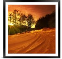 Winter World, Framed Mounted Print