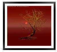 All A Glow, Framed Mounted Print