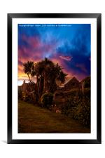 Palm Trees #2, Framed Mounted Print