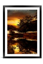 The Pool, Framed Mounted Print