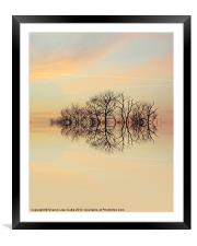 Angelic Branches, Framed Mounted Print