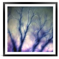 Mystic trees, Framed Mounted Print