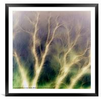 Mystic trees inverted, Framed Mounted Print