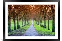 Path To The Castle, Framed Mounted Print