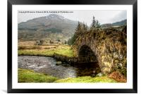 Butterbridge, Framed Mounted Print