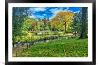 Central Park NYC, Framed Mounted Print