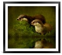 Otters Watch, Framed Mounted Print