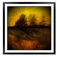 Roots, Framed Mounted Print