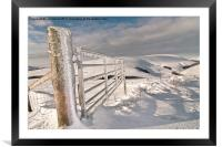 Frozen Gate, Framed Mounted Print