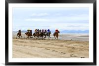 Horse Racing on Laytown Beach, Framed Mounted Print