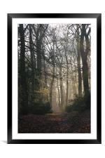 Early Autum Morning, Framed Mounted Print