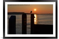 sun setting over the quay, Framed Mounted Print