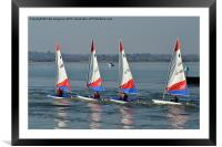 Four lazers dinghy's, Framed Mounted Print