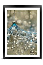 Cyan & Gold, Framed Mounted Print