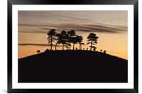 Colmers Hill, Framed Mounted Print