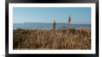 Sandbanks in early Spring, Framed Mounted Print