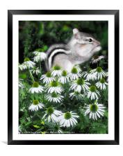 Flower Baby, Framed Mounted Print