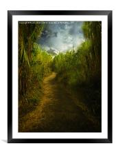 Follow the Path, Framed Mounted Print