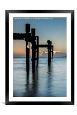Dolphins at Lepe, Framed Mounted Print