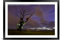 Night Time Tree, Framed Mounted Print
