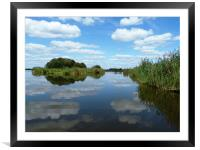 Clouds reflecting in the waters of the reed beds, Framed Mounted Print