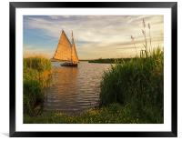Sailing into the sun, Framed Mounted Print