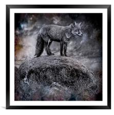 In the light of the silvery moon, Framed Mounted Print