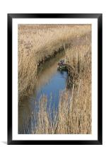 Boat in reeds, Framed Mounted Print