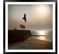 Free As...., Framed Mounted Print