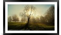 THE MIST, Framed Mounted Print