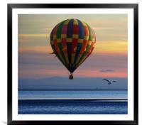 double flight, Framed Mounted Print