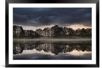 Mirrored Trees, Framed Mounted Print