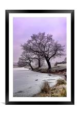 New Year Frost, Framed Mounted Print