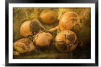 Onions, Framed Mounted Print