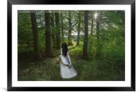 A walk in the woods, Framed Mounted Print