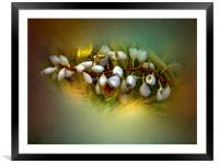 Nature Glows, Framed Mounted Print