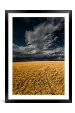 Cloud over corn stubble., Framed Mounted Print