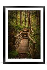 Woodland Bridge At Thirlmere, Framed Mounted Print