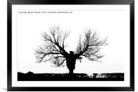 Lone Tree Silhouette, Framed Mounted Print