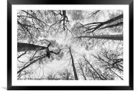 To the Top, Framed Mounted Print