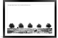 Five Trees, Framed Mounted Print