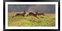 March Hare's, Framed Mounted Print