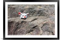 Mouse on a rock, Framed Mounted Print