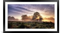 Sunrays, Framed Mounted Print