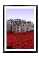 Tower of London poppy Seas of Red, Framed Mounted Print