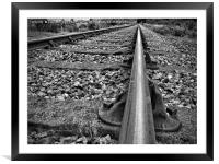 On The Right Track 1, Framed Mounted Print